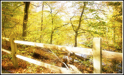 Photograph - Wooden Fence, Autumn Trail by A Gurmankin