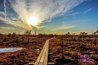 Bath Time - Wooden footpath in swamp at sunset by Jekaterina Sahmanova