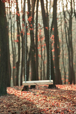 Photograph - Wooden Swing In Autumn Forest by Jelena Jovanovic
