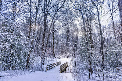 Achieving - Wooden walking bridge in a frozen forest covered in snow during  by Patrick Wolf