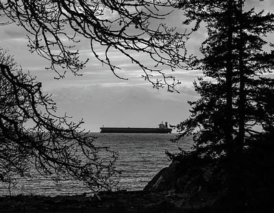 Photograph - Woodland Cargo by Perggals - Stacey Turner