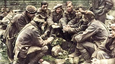Owls - WWI POWa colorized by Ahmet Asar by Ahmet Asar