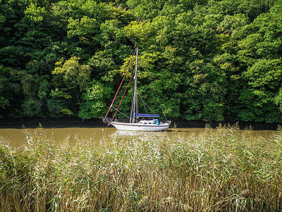 Photograph - Yacht On River Tamar Calstock Cornwall by Richard Brookes