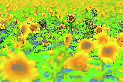 Jerry Sodorff Royalty-Free and Rights-Managed Images - Yellow Blue Green Sunflowers by Jerry Sodorff