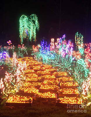 Photograph - Yellow Brick Road Flower Christmas Lights At Night by Valerie Garner