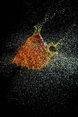 Photograph - Yellow Explosion by Dan Friend
