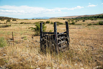 Photograph - Yellow Grass And Fence Anchor by Tom Cochran