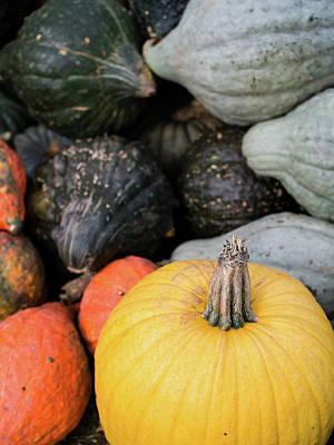 Photograph - Yellow Pumpkin by Whitney Leigh Carlson
