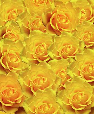 Photograph - Yellow Roses Art Design by Johanna Hurmerinta