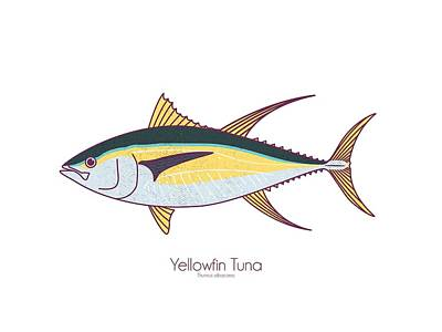 Digital Art - Yellowfin Tuna by Kevin Putman