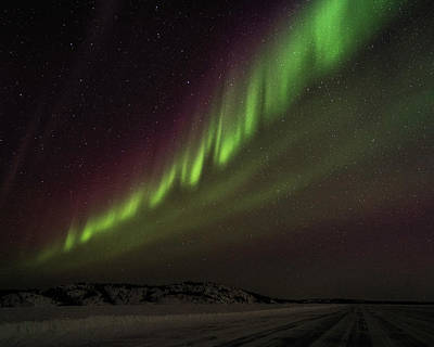 Photograph - Yellowknife Northern Lights by Laura Hedien