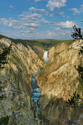 Photograph - Yellowstone Falls in the Grand Canyon of the Yellowstone by Don Johnston