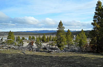 Movies Star Paintings - Yellowstone Valley Springtime by Michele Myers