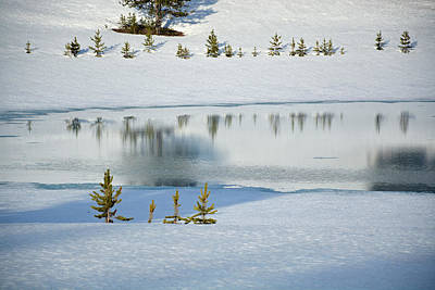 Photograph - Yellowstone's Divide Lake And Reflections In Deep Winter by Bruce Gourley