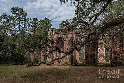 Photograph - Yemassee Sc - Old Sheldon Church by Dale Powell