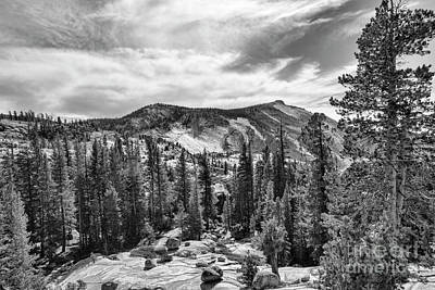 Photograph - Yosemite National Park Black White  by Chuck Kuhn