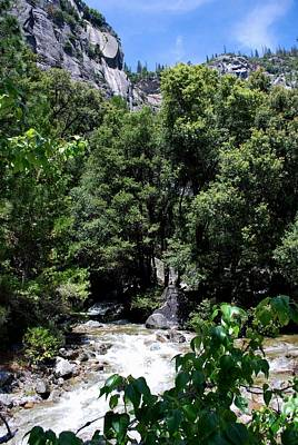 Photograph - Yosemite River Green View Vertical by Matt Harang