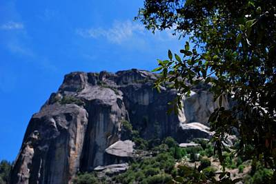 Photograph - Yosemite Rock Formation Through Trees 2 by Matt Harang