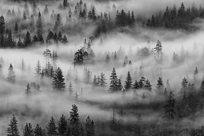 Art Print featuring the photograph Yosemite Valley Fog by Rand
