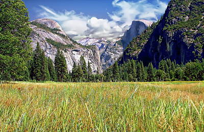 Photograph - Yosemite Valley View by Anthony Dezenzio
