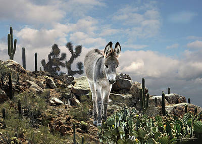 Digital Art - Young Burro Of The Sonoran Desert by IM Spadecaller
