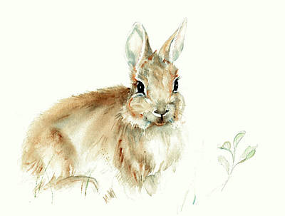Painting - Young Rabbit by Karen and Phil Rispin