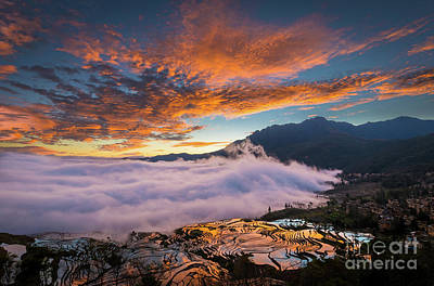 Photograph - Yuanyang Sunrise by Inge Johnsson
