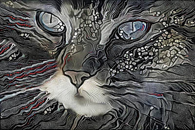 Digital Art - Ziggy Stardust The Cat by Peggy Collins
