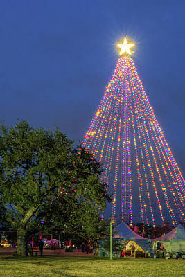 Photograph - Zilker Holiday Tree by Slow Fuse Photography
