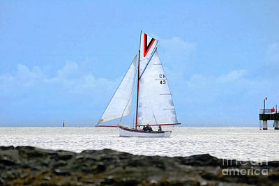 Photograph - Zilpha In Carrick Roads Cornwall by Terri Waters