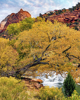 Photograph - Zion Canyon Autumn by Leland D Howard