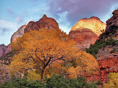 Zion Cliffs Autumn Art Print by Leland D Howard