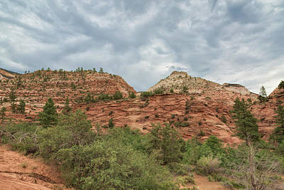 Photograph - Zion East by John M Bailey