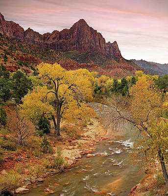 Photograph - Zion National Park by Leland D Howard