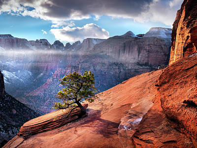 Photograph - Zion National Park Light by Leland D Howard