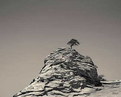 Photograph - Zion National Park Utah IIi Toned by David Gordon