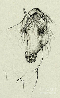 Animals Drawings - Arabian horse by Angel Ciesniarska
