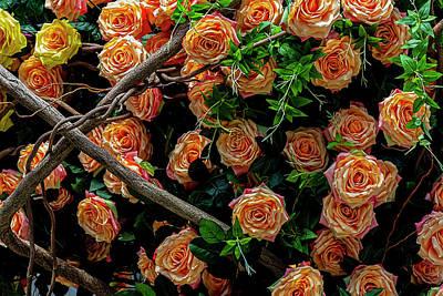 Sheep - Artificial Flowers by Robert Ullmann