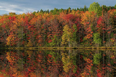 Olympic Sports - Autumn Reflections Thornton Lake by Dean Pennala