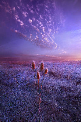 Royalty-Free and Rights-Managed Images - Be Still by Phil Koch