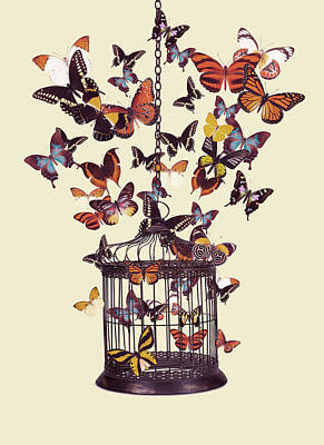 Surrealism Digital Art - Bird cage with butterflies by Mihaela Pater