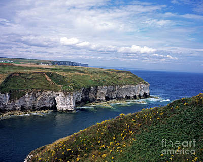 Kitchen Mark Rogan - Chalk sea cliffs on the coast  at Flamborough Head near Bridlington East Yorkshire England by Michael Walters