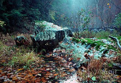 Vintage Pink Cadillac - Chopawamsic Creek misty autumn day by Thomas R Fletcher