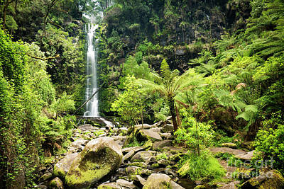 Photograph - Erskine Falls Waterfall by Tim Hester