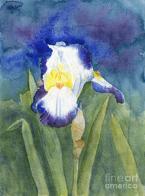 Design Turnpike Vintage Maps - Glowing Evening Iris Watercolor by Conni Schaftenaar