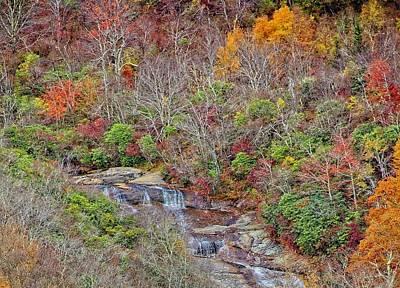 Photograph - Graveyard Fields Lower Falls by Allen Nice-Webb