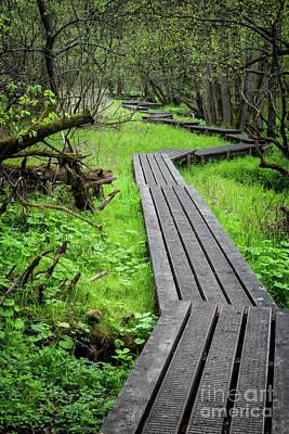 Landscape Photos Chad Dutson - Grejsdalen footpath in the wilderness, Denmark by Frank Bach