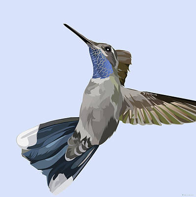 Royalty-Free and Rights-Managed Images - Hummingbird by Stars on Art
