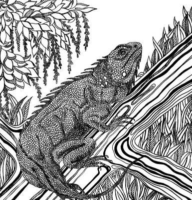 Animals Drawings - Iguana by Jennifer Wheatley Wolf