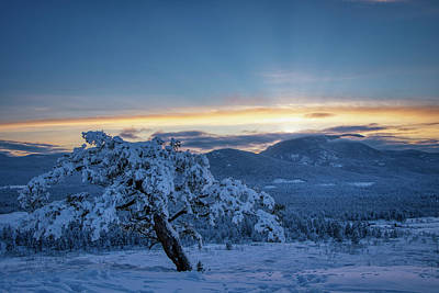 Photograph - Last sun by Thomas Nay